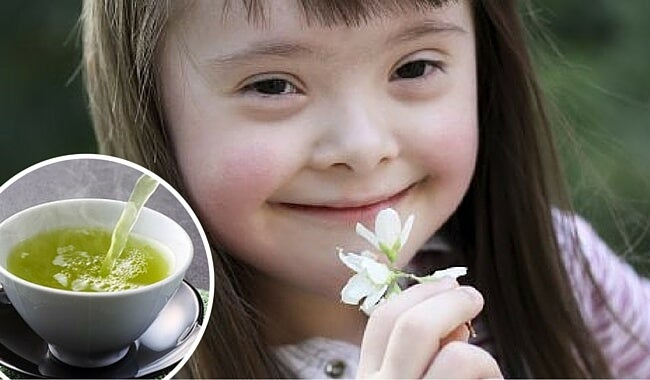 El té verde podría mejorar la calidad de vida de las personas con síndrome de Down