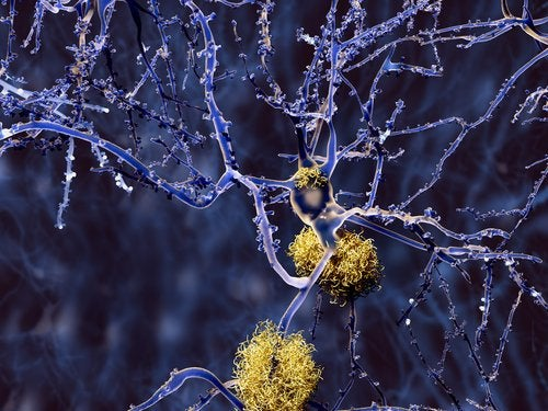 Some neurons in the neural network.
