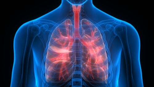 Remedios naturales contra la enfermedad pulmonar obstructiva crónica
