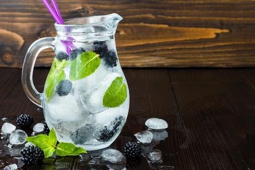bebida desintoxicante con moras