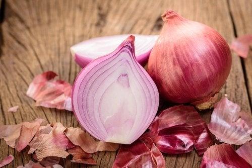 Cebolla para mejorar la función renal