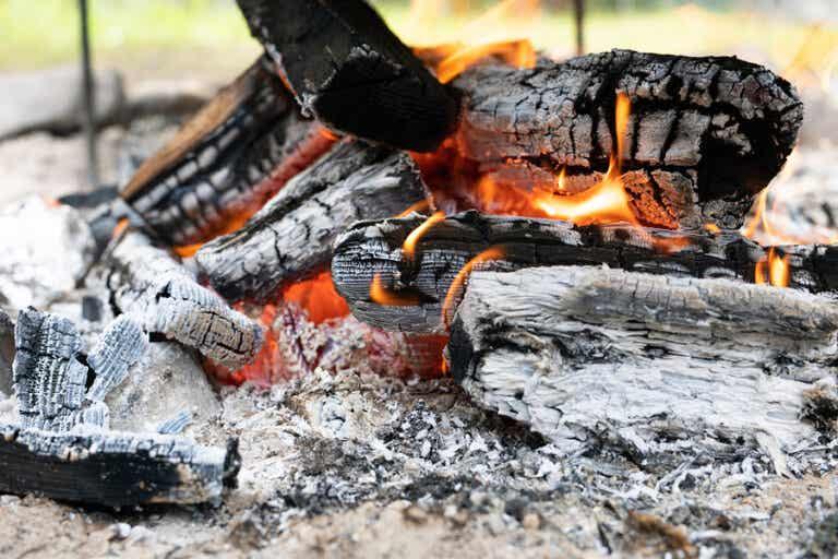 8 interesantes usos de la ceniza de madera
