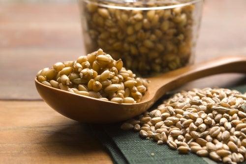 germen de trigo para el cabello