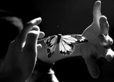 Manos con mariposa