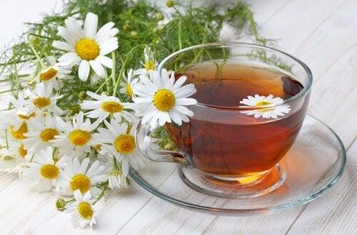 4 tés herbales para tener una piel joven