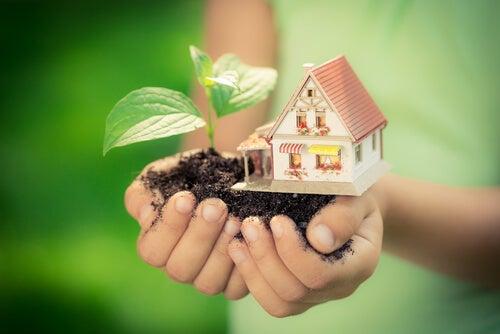 7 medidas ecológicas que puedes implantar en tu hogar