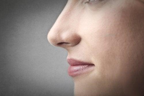 Nariz de perfil mostrando herencia genética