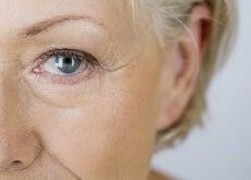 orégano contra el envejecimiento
