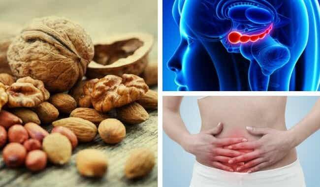7 beneficios de las nueces que posiblemente no conocías