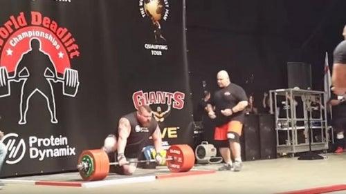 Eddie-500 kilos