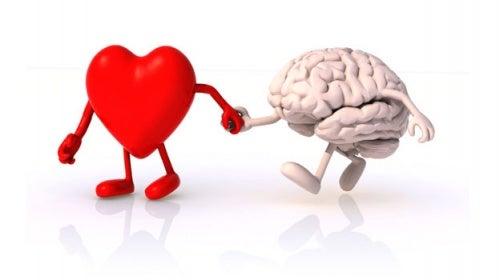 corazón-y-cerebro