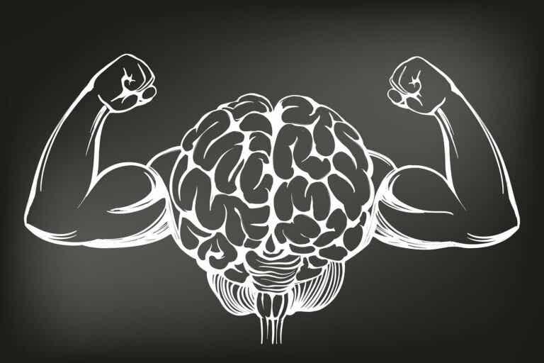 Los 8 mejores ejercicios para entrenar y aumentar la potencia cerebral