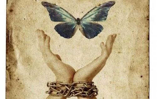 manos-alcanzando-mariposa