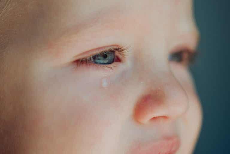 Curiosidades que desconocías sobre las lágrimas y llorar