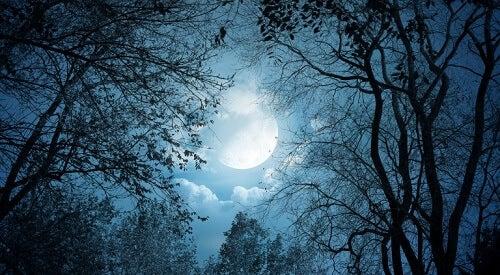 5 formas en que la luna afecta tu salud