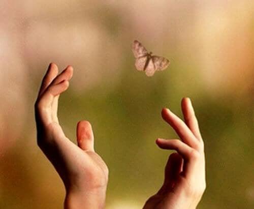 manos-intentando-alcanzar-una-mariposa