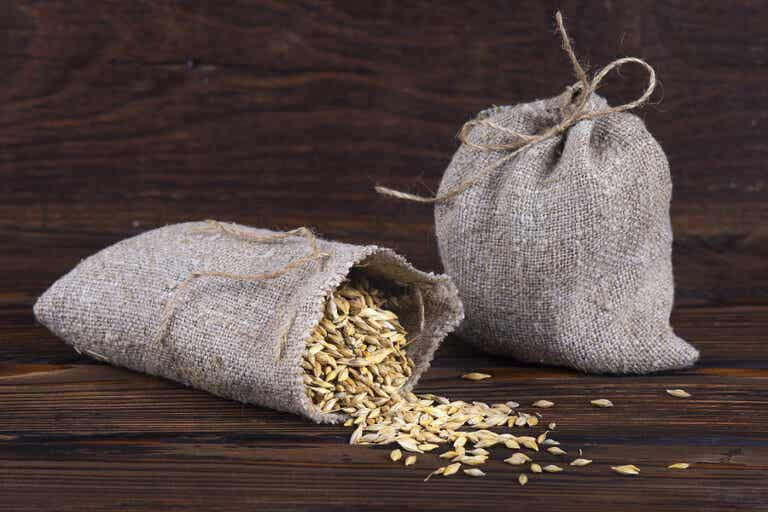 Cómo hacer saquitos de semillas para calmar los dolores