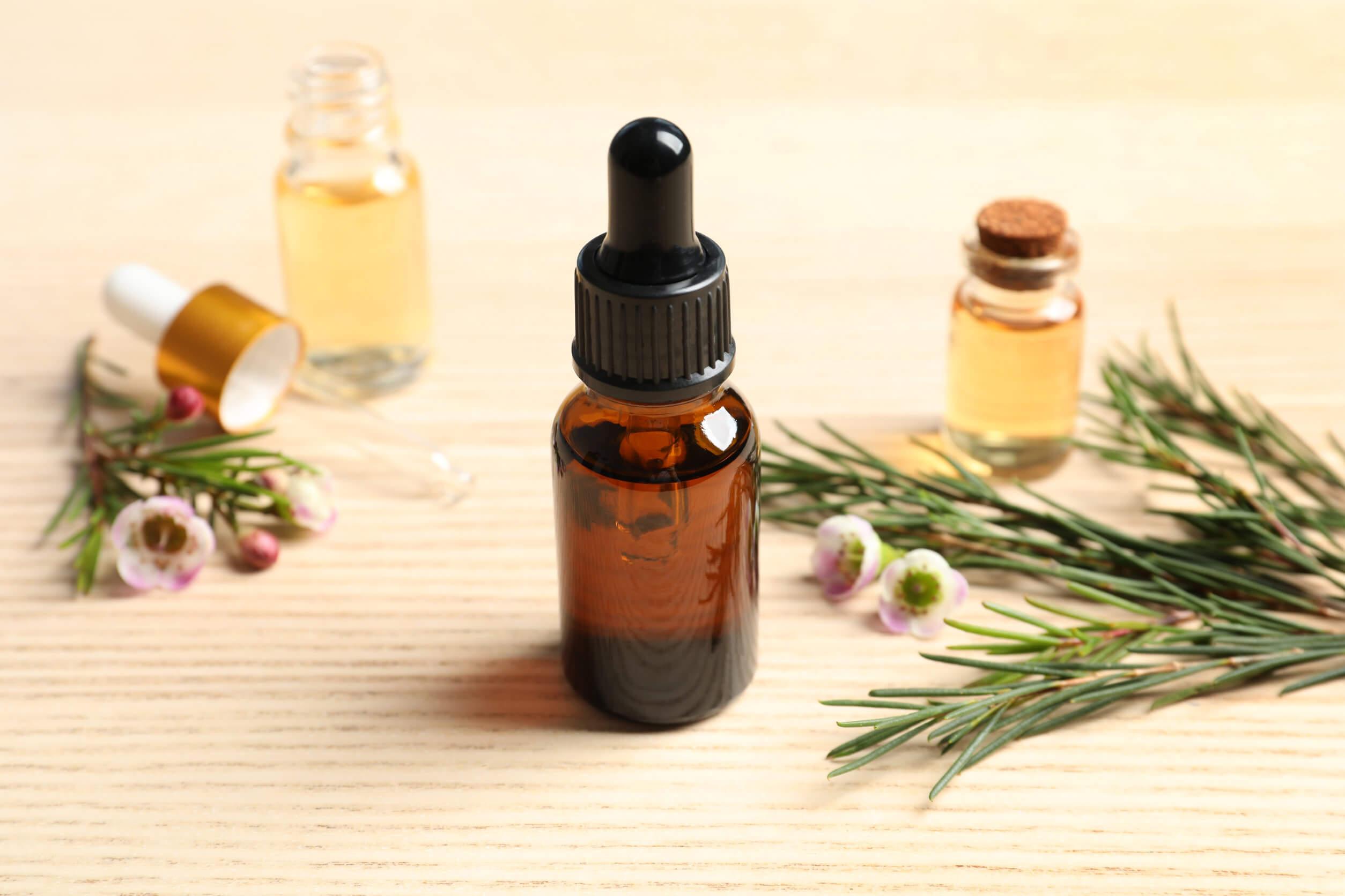 El aceite del árbol del té: el aceite de la vida y de los mil remedios