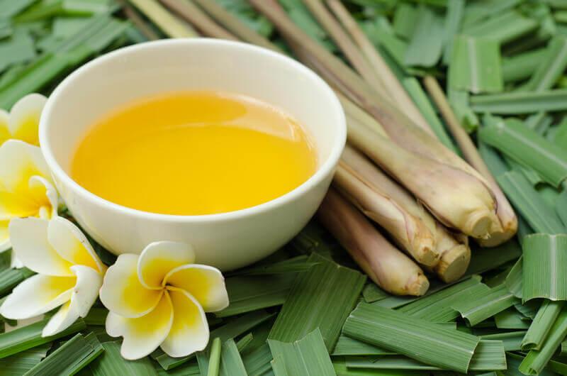 la citronella como repelente natural