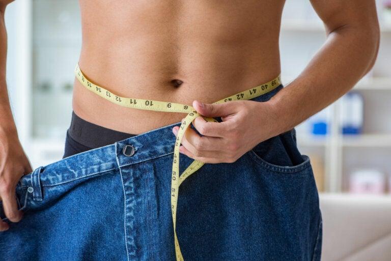 Así deberían ser las proporciones de tus platos para perder peso