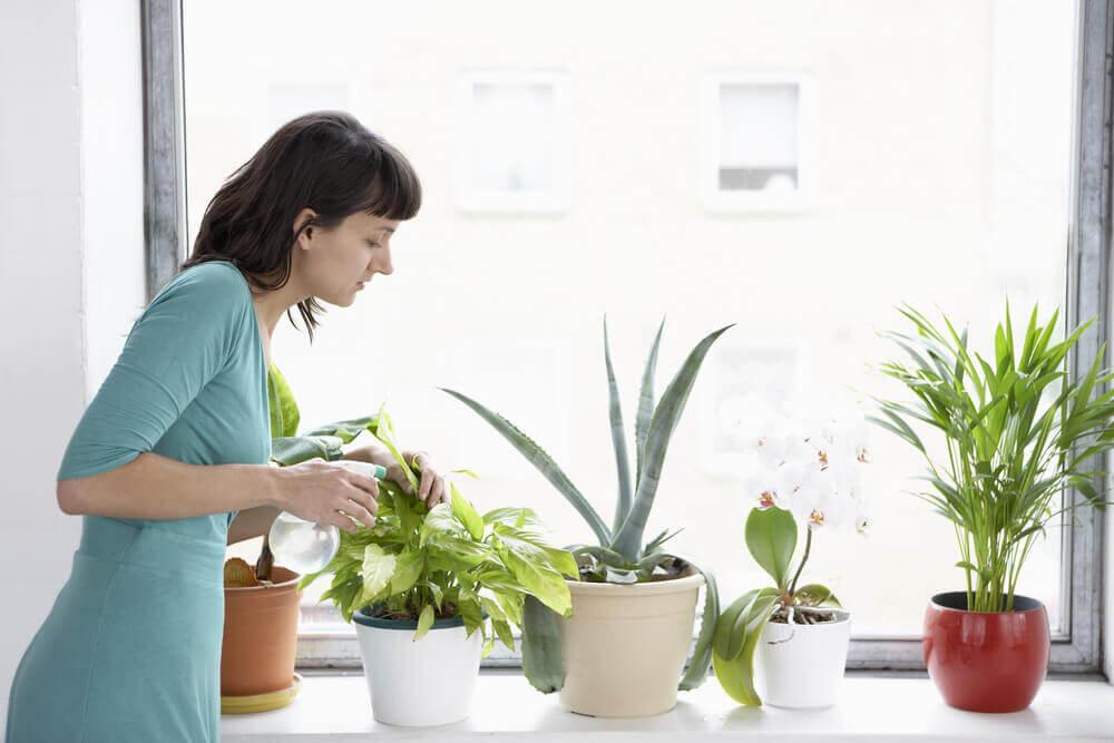 Mujer regando las plantas.