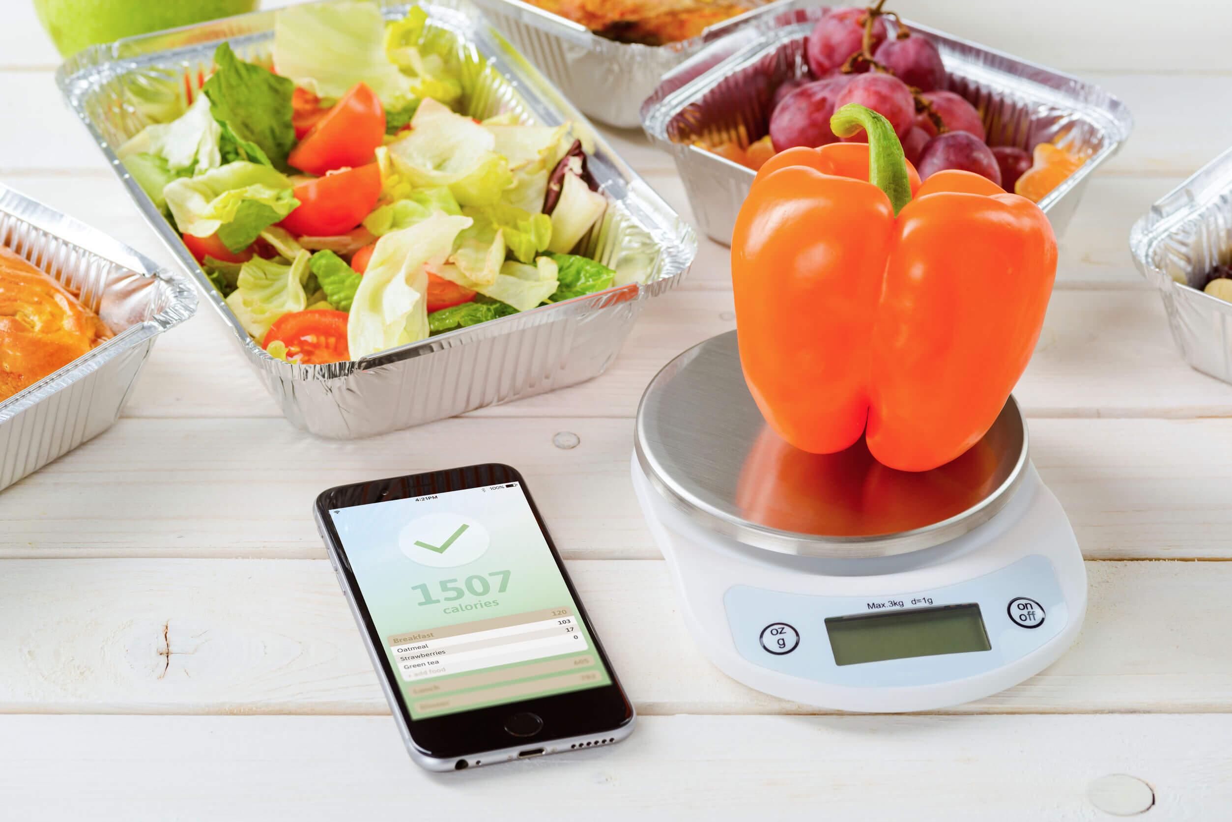 Las proporciones de tus platos dependen de su composición.