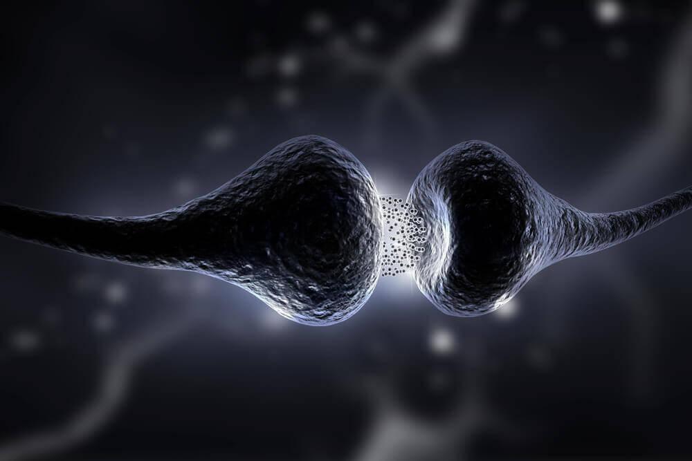 Sinapse liberando serotonina