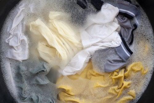 Tratar la ropa con bórax