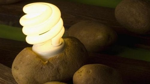 Descubre cómo iluminar tu habitación con una patata