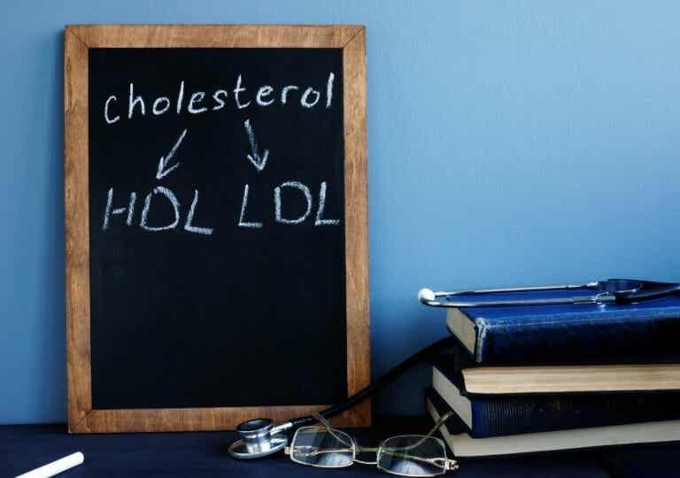 Puede que no lo sepas todo sobre el colesterol: 5 aspectos importantes