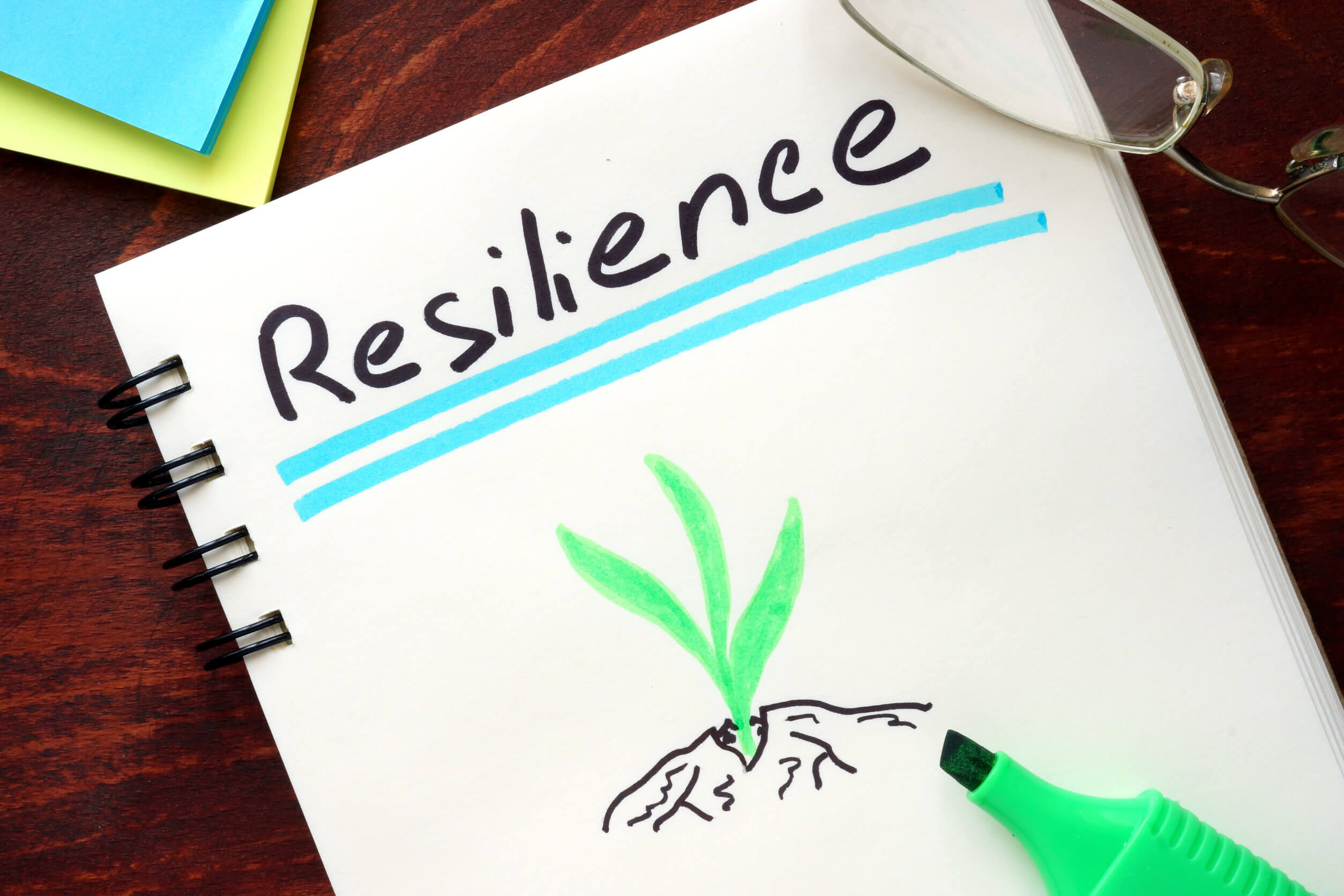 La resiliencia se aprende