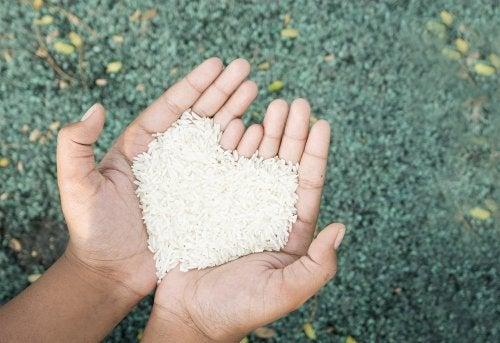manos sujetando arroz