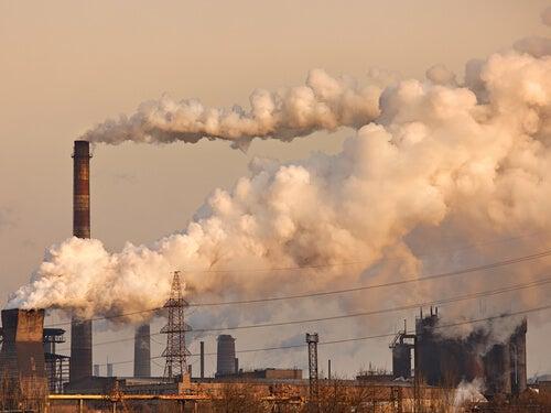 La contaminación del aire causa enfisema pulmonar
