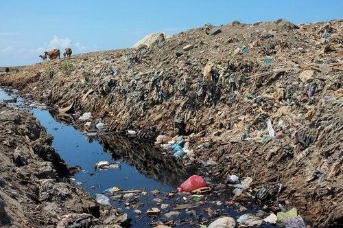 Contaminación ambiental del suelo