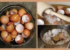 Descubre 6 interesantes remedios naturales con cáscara de huevo