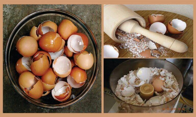 Descubre 6 interesantes remedios naturales con cáscara de huevo ...