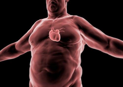 Los peligros de tener grasa abdominal