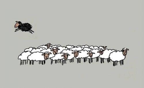 """4 razones por las que ser la """"oveja negra"""" es saludable"""