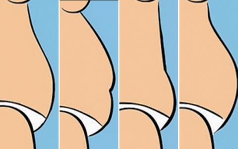 ¿Qué te indica tu tipo de barriga? ¡Descúbrelo!