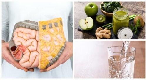 ¿Cómo limpiar el colon de forma natural?