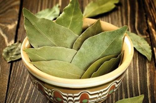 Ingredientes para el té de canela y laurel