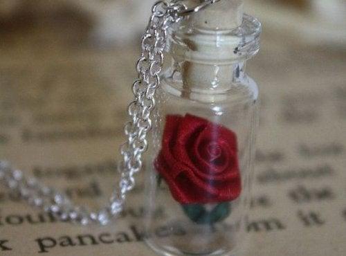 rosa en botella simbolizando los rituales de la felicidad