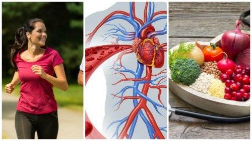 6 hábitos saludables para cuidar la salud cardiovascular