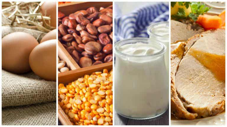 7 saludables fuentes de proteínas que deberías incluir en tu dieta
