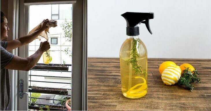 Aprende a preparar un espray desinfectante para dejar un agradable aroma en tu hogar