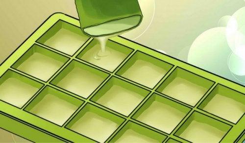 Descubre los beneficios de congelar aloe vera o sábila. ¡Impresionante!