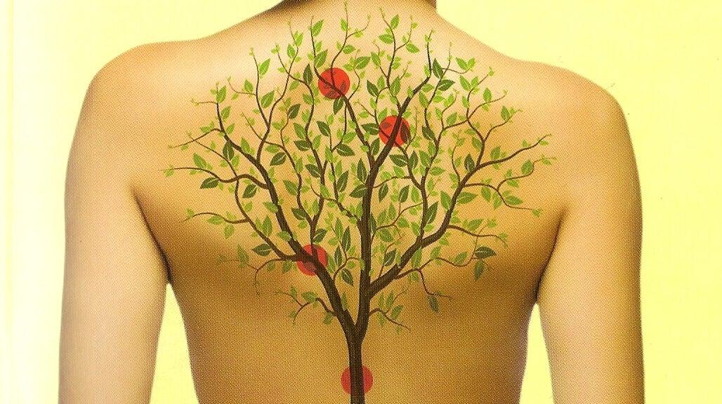 Como se relacionan los órganos de tu cuerpo con las emociones ...