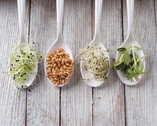 Decorar los platos para sumar nutrientes