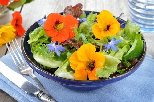 Ensaladas con flores, germinados y semillas