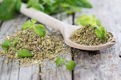 El orégano tiene propiedades excelentes para la salud digestiva y puede ayudarte a vencer la diverticulitis.